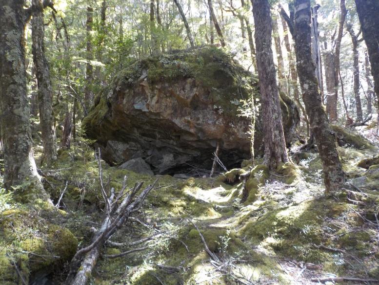 Bivy Rock