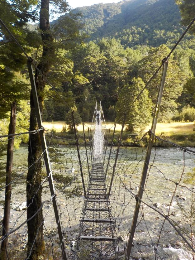 Compulsory Bridge Shot