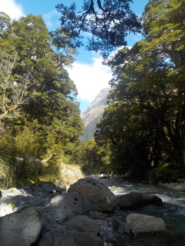 Down Fraser Creek