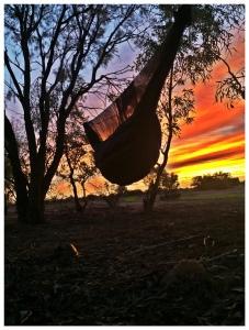 #hummingbirdhammocks #HammockGear UQ #BIAS #Buginator